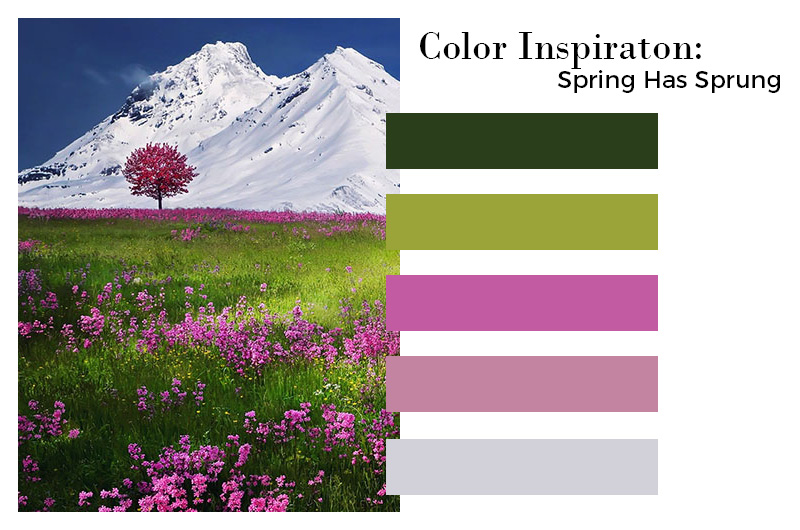 Color Inspiration - Spring Has Sprung